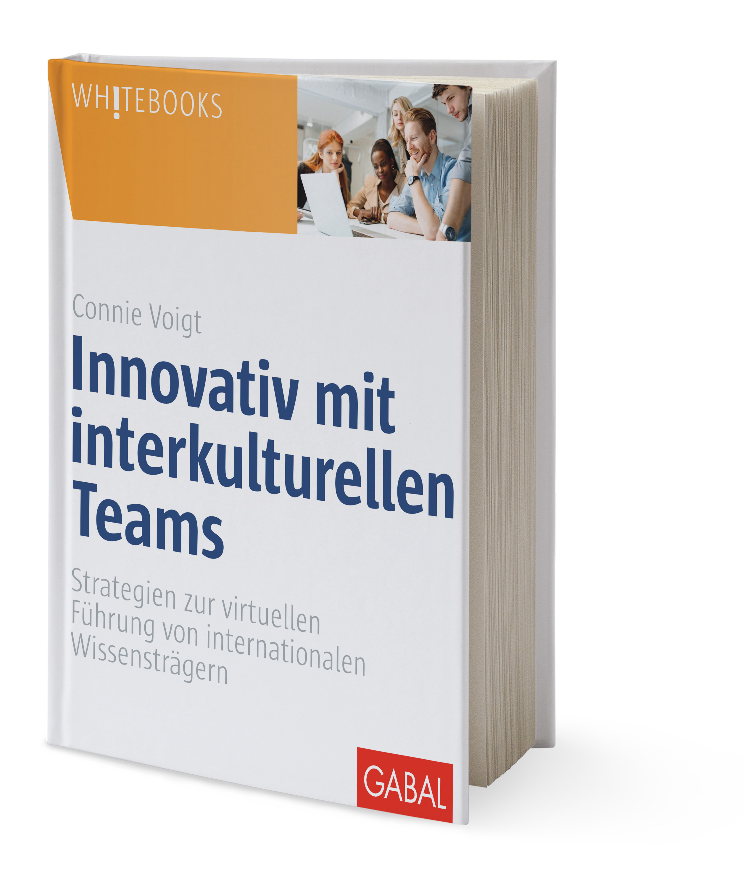 Voigt Innovativ mit interkulturellen Teams